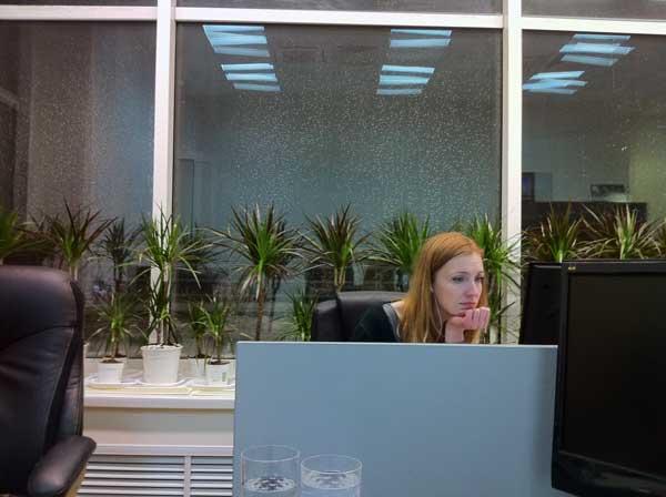 Озеленение рабочего места в офисе