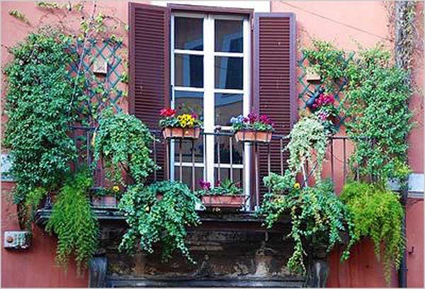Проверьте внешний вид окна