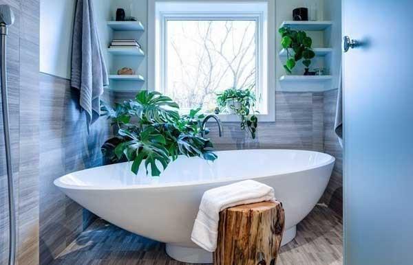 Создаем маленькие джунгли в ванной